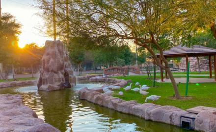 Everything you need to know about Al Khor Family Park in Qatar