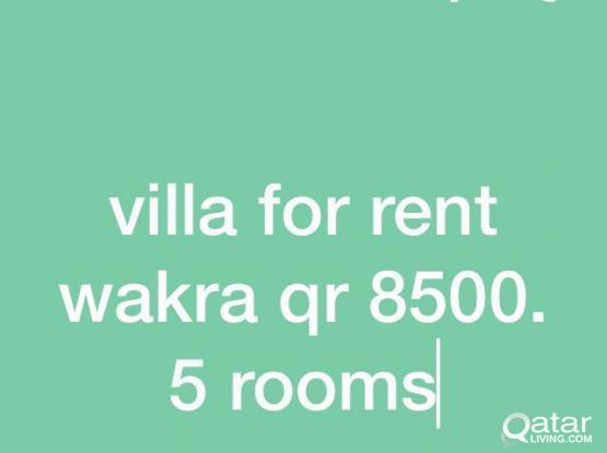 villa for rent wakra