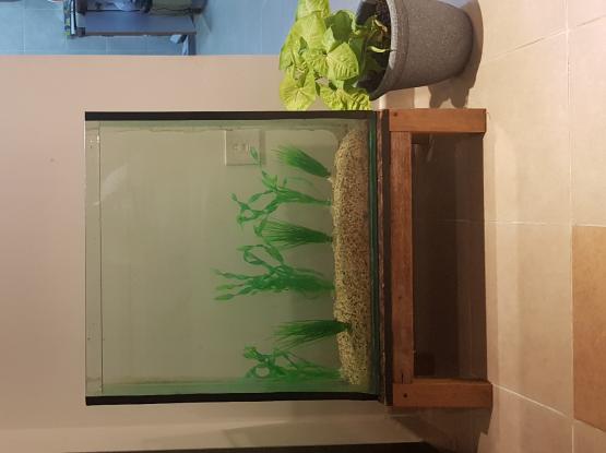 Aquarium with stand