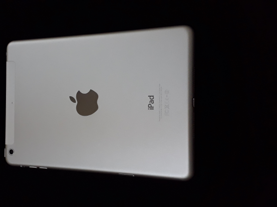 iPad mini 2 SIM card version