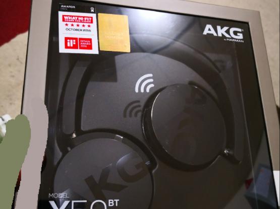AKG ( Harmon Kardon) Headset