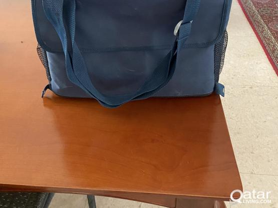 Electric cool bag