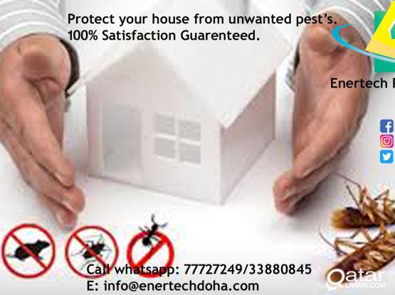 Pest Control Services - Messaid/Al Wukair