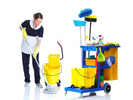 All Cleaning Services  - 50088702
