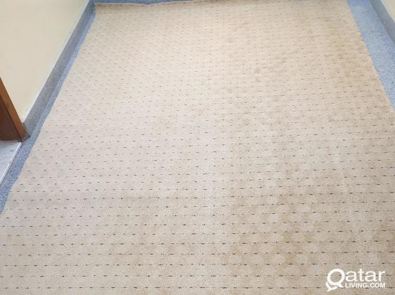 BRAND NEW Carpet For Sale