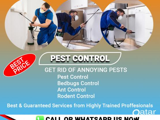 Call US 30791444   Best Pest control Services