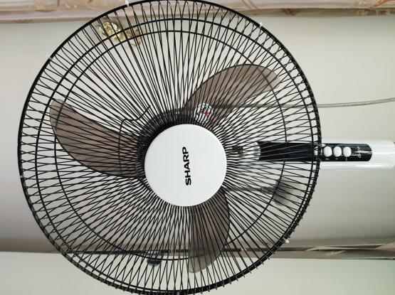 Sharp Stand fan