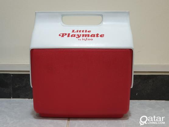 Igloo Mini Cooler Box