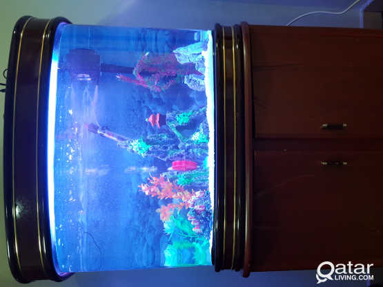 Aquarium with stand/fish tank for sale