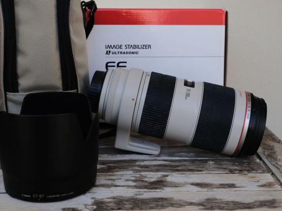 Canon 70-200mm F2.8L IS Mk2 & 1.4X TC Mk3
