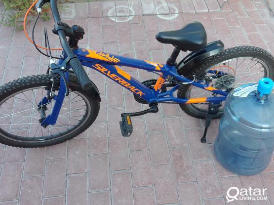 Silver back kids bike