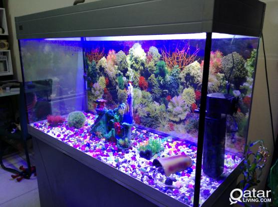 Ocean Free Aquarium Fish Tank for sale