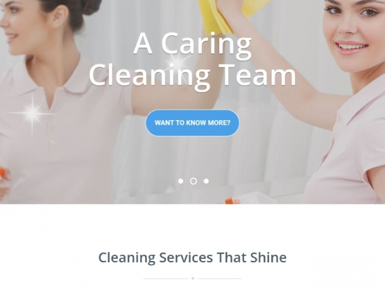 Ready made cleaning company website