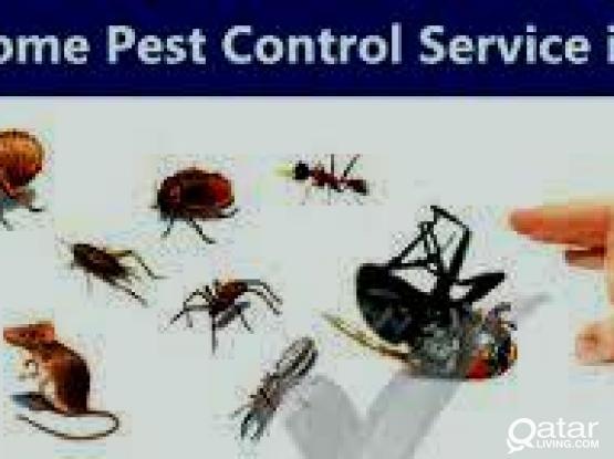 Qatar pest control 77283624