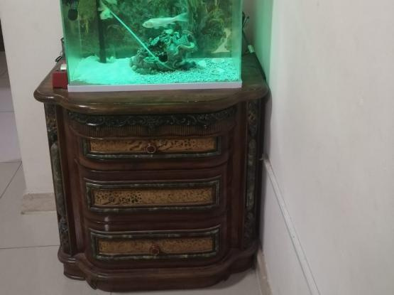 Large fish tank with digital display and full acce