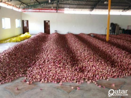 We Export Indian Onion