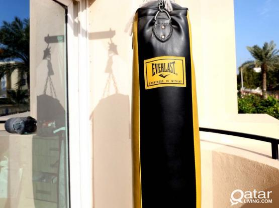 Professional Everlast boxing/punching bag with Outshock wall bracket