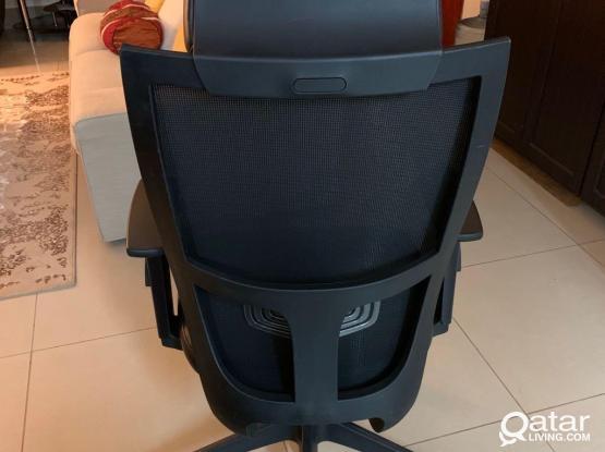 Ergonomics Chair For Sale