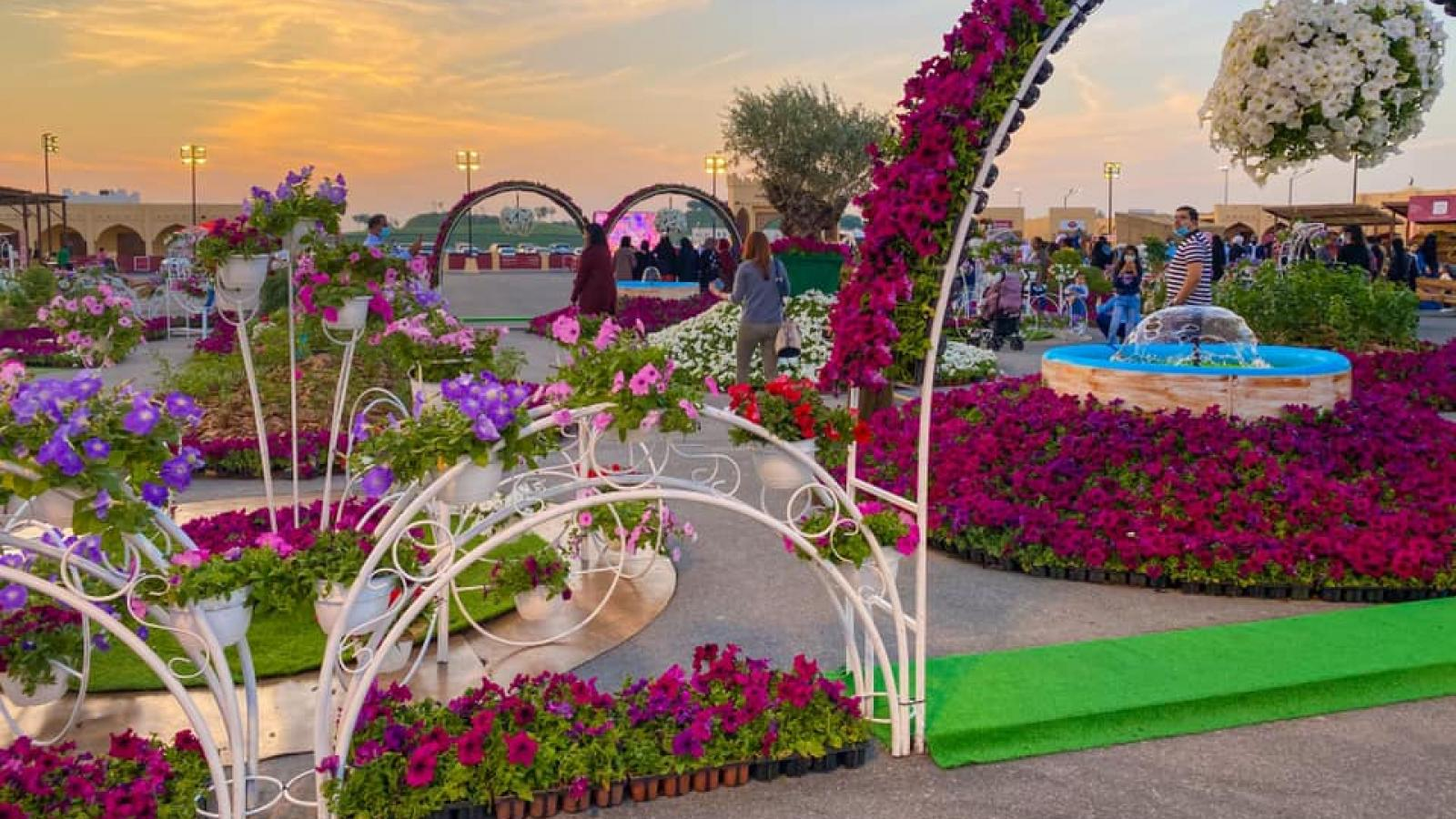5th Mahaseel Festival is taking place at Katara Cultural Village