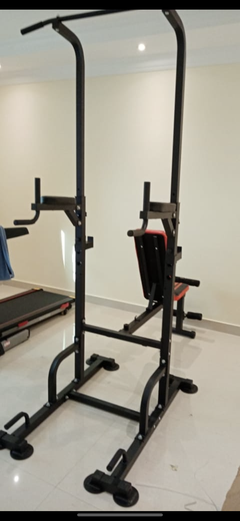 Adjustable dumbbell with pullup and dips
