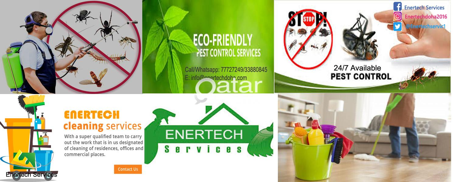 Best Pest Control and Cleaning Services in Qatar